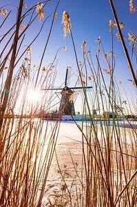 De Hollandse windmolens van kinderdijk  van