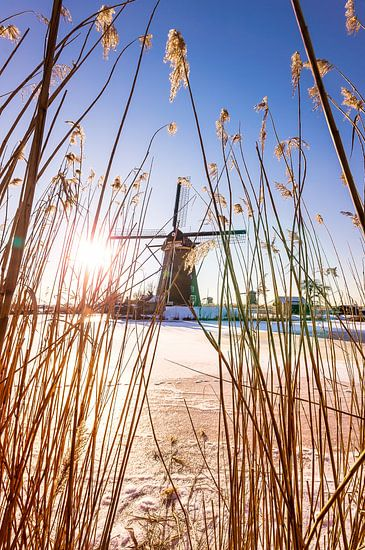 De Hollandse windmolens van kinderdijk  van Etienne Hessels