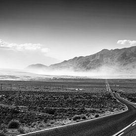 Highway in Death Valley van Ricardo Bouman | Fotografie