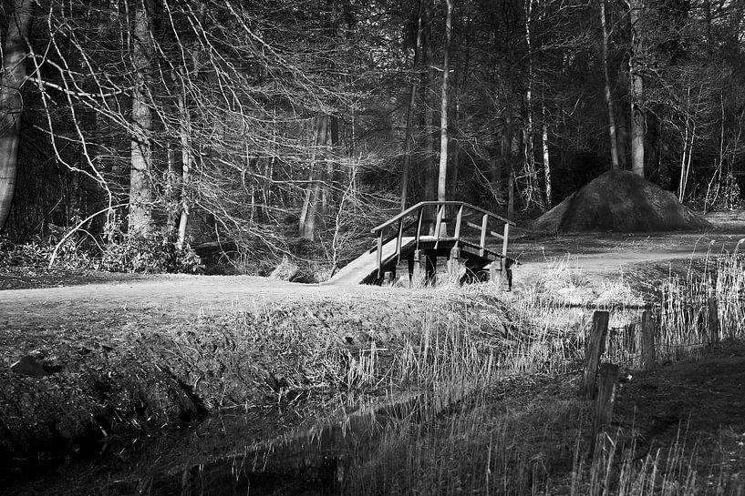 Bridge van Ruud van Ravenswaaij