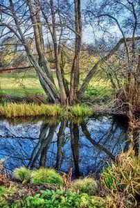 Spiegeling in Sonsbeek park van Jurjen Jan Snikkenburg