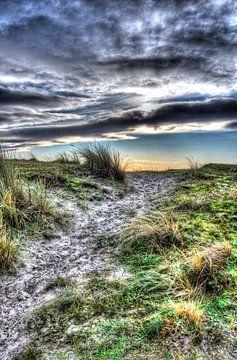 Duinen in Holland van Rodney Hooijman