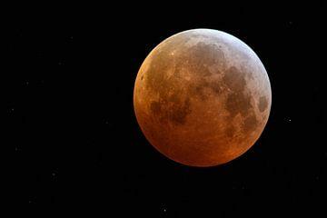 Pleine lune, lune de sang, supermonde dans le ciel nocturne avec des étoiles scintillantes au-dessus
