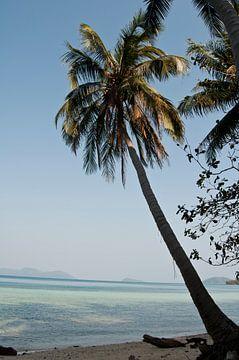 Tropisches Bild auf Insel in Thailand von Doris van Meggelen