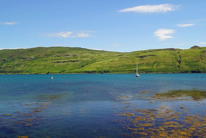 Scotland landscape, lakes van Babetts Bildergalerie