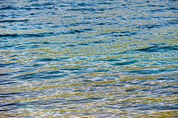 zeewier kleurt de zee van Hanneke Luit