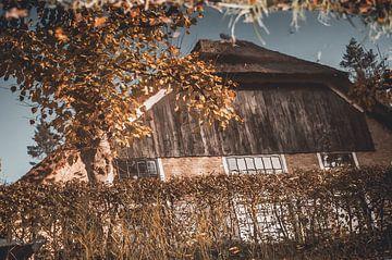 Herfst van Nancy van Verseveld