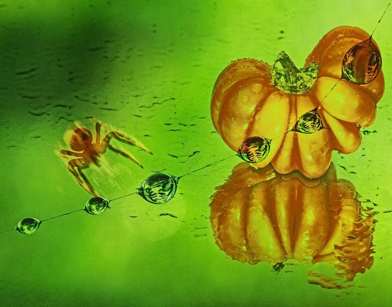 Halloween van Irene Lommers