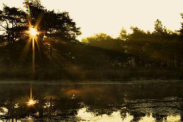Zonsopkomst op de heide met nevel boven het water en mooie spiegeling van