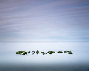 Silence  van Tony Ruiter