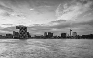 Skyline Rotterdam met Euromast in zwartwit