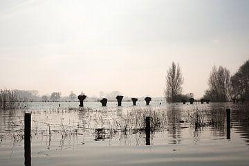 Waterfront van Joke Absen