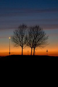 Sunset van