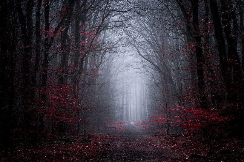 Donkere symfonie van Tvurk Photography