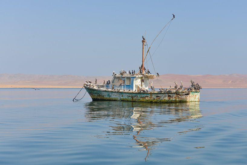 Oude drijvende boot  op meer bewoond door pelikanen van Jille Zuidema