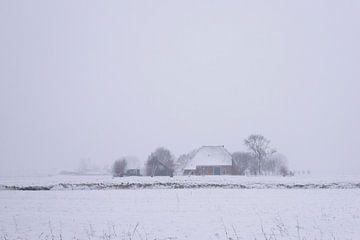Schneesturm auf der Farm von Barbara Brolsma