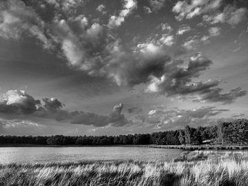 Landschap von Alex Davidse