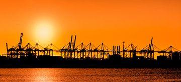 Sunset at Port of Rotterdam van Ton van Buuren