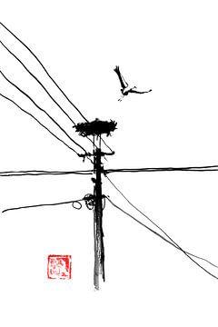 Storchenabnahme von philippe imbert