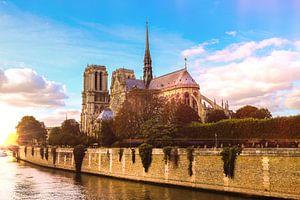 Paris Notre Dame van Mark Zanderink