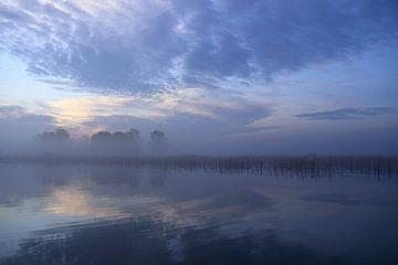 Blauwe zonsopkomst bij park Lingezegen Arnhem Elst van Bobsphotography
