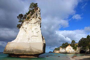 Hoho rots op het strand van Cathedral Cove in Nieuw Zeeland van Aagje de Jong