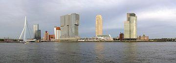 Kop van Zuid in Rotterdam van Wim Stolwerk