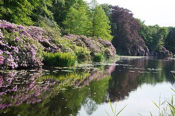 big gardens in forest near Baarn in Holland