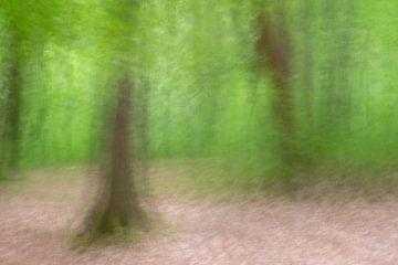Abstracte boswandeling 6 van Danny Budts