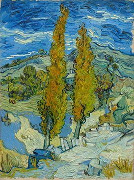 Zwei Pappeln in den Apilles bei Saint-Rémy, Vincent van Gogh