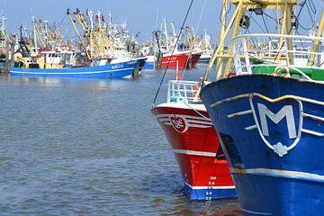 Nederland, haven van Lauwersoog van Bernard van Zwol