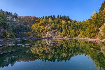 Katzenbuckelsee Ostufer im Herbst von Uwe Ulrich Grün