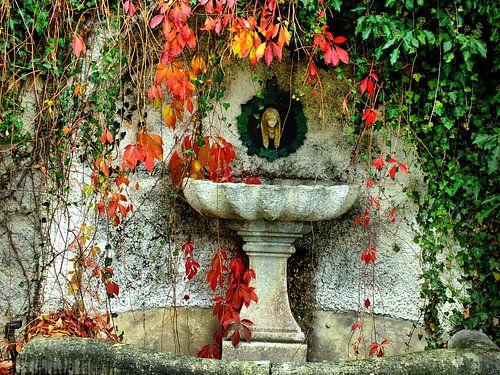 Brunnen  von