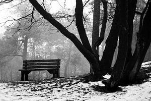 bankje in de sneeuw van