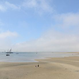 Eb aan de kust van Terschelling van Nora Verhoef