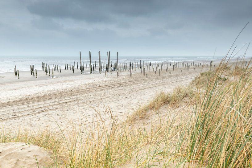 Strand bij Palendorp Petten van Ruud Engels