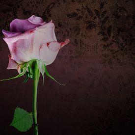 Stilleven met rose roos van Ineke Huizing
