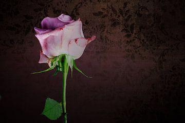 Liebe Rosen von Ineke Huizing
