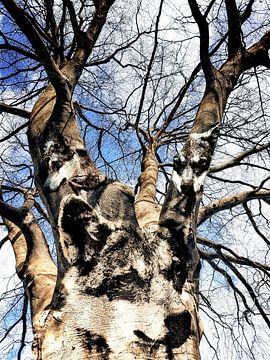 Wolven in de boom van Nannie van der Wal