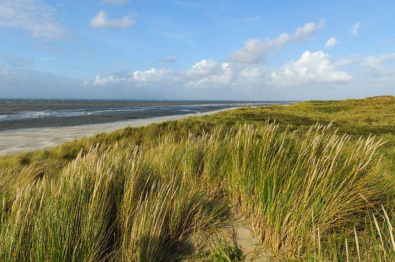 Strand van het Waddeneiland Vlieland van Sjoerd van der Wal