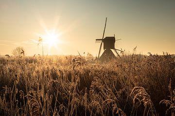 Windmühlen sonnenaufgang in Holland von Claire Droppert