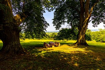 7 lindebomen van W.Schriebl PixelArts