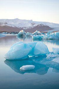 Jökulsárlón Gletschersee mit Eisscholle, Island von Elles van der Veen