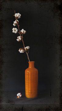 Stilleben: Orangefarbene Vase mit Baumwolle. von Danny den Breejen