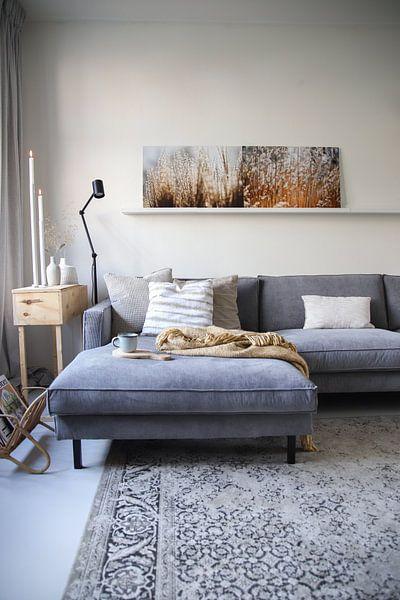 Kundenfoto: Winter glow.. von Carla Mesken-Dijkhoff, auf alu-dibond