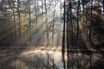 Herfst aan het water van Bart Ceuppens