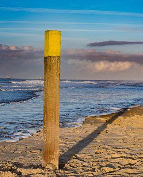 Strandpfosten im letzten Abendlicht von Michel Knikker