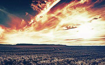 Der Weg des Gladiators - Sommer, Sonne, Sehnsucht von Jakob Baranowski - Off World Jack