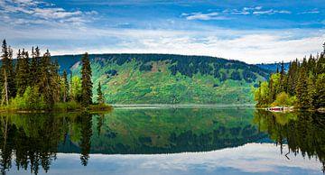 Bootje in Meziadin Lake, Brits Columbia, Canada van Rietje Bulthuis