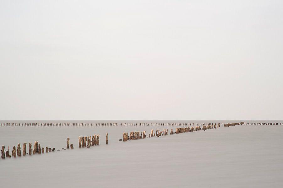 Silence I van Aline van Weert
